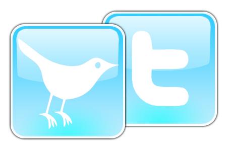 twitter logo resized 600